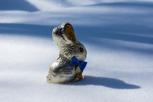 snowy easter